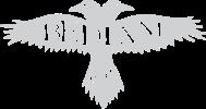 verify-logo-2
